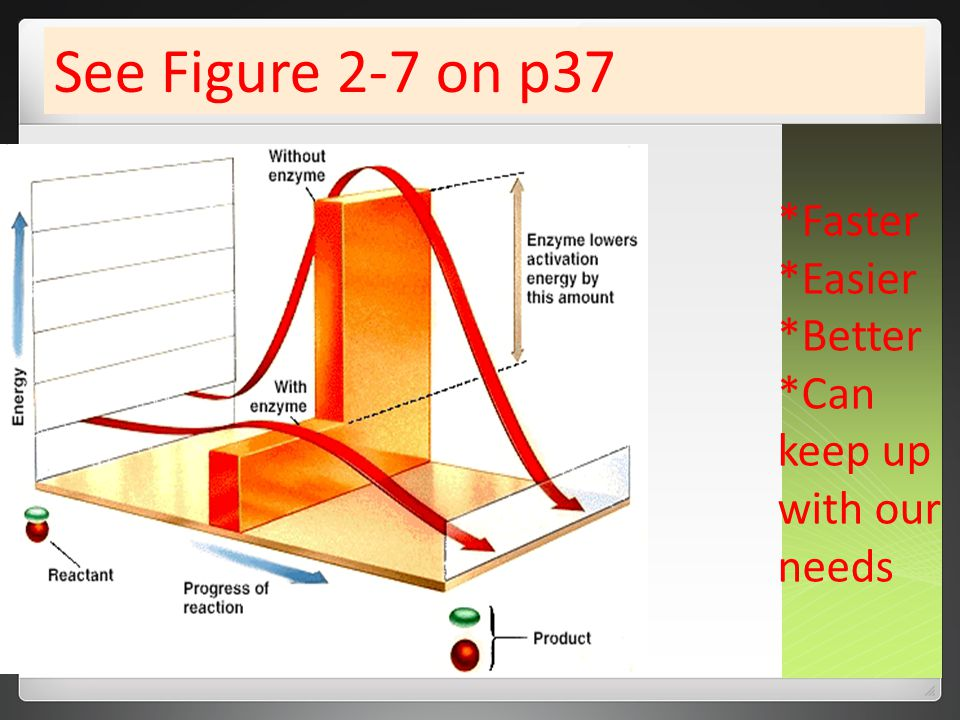 *Faster *Easier *Better *Can keep up with our needs See Figure 2-7 on p37