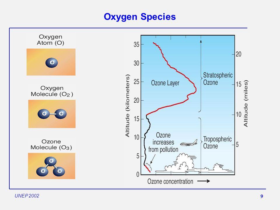 9 Oxygen Species UNEP 2002