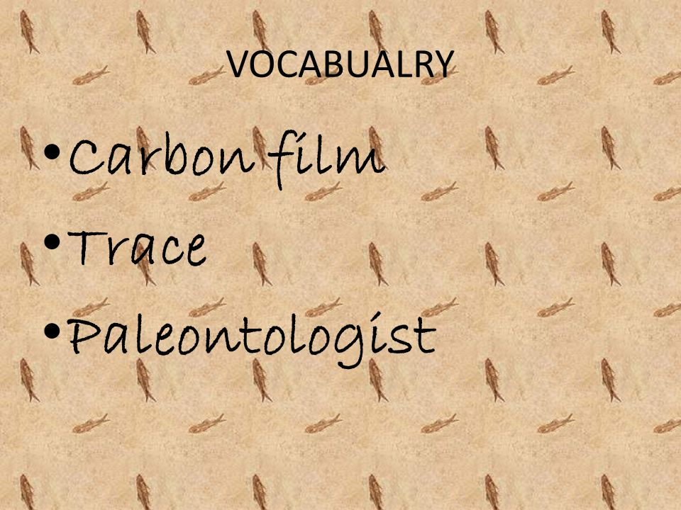 VOCABUALRY Carbon film Trace Paleontologist