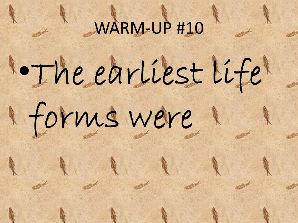 WARM-UP #10 The earliest life forms were
