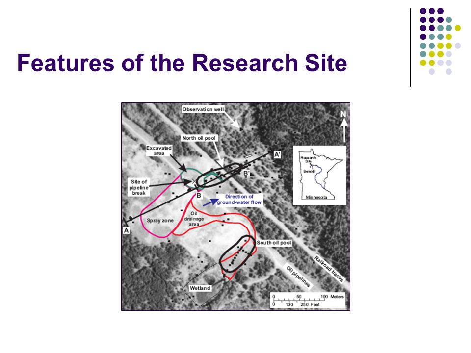 Features of the Research Site