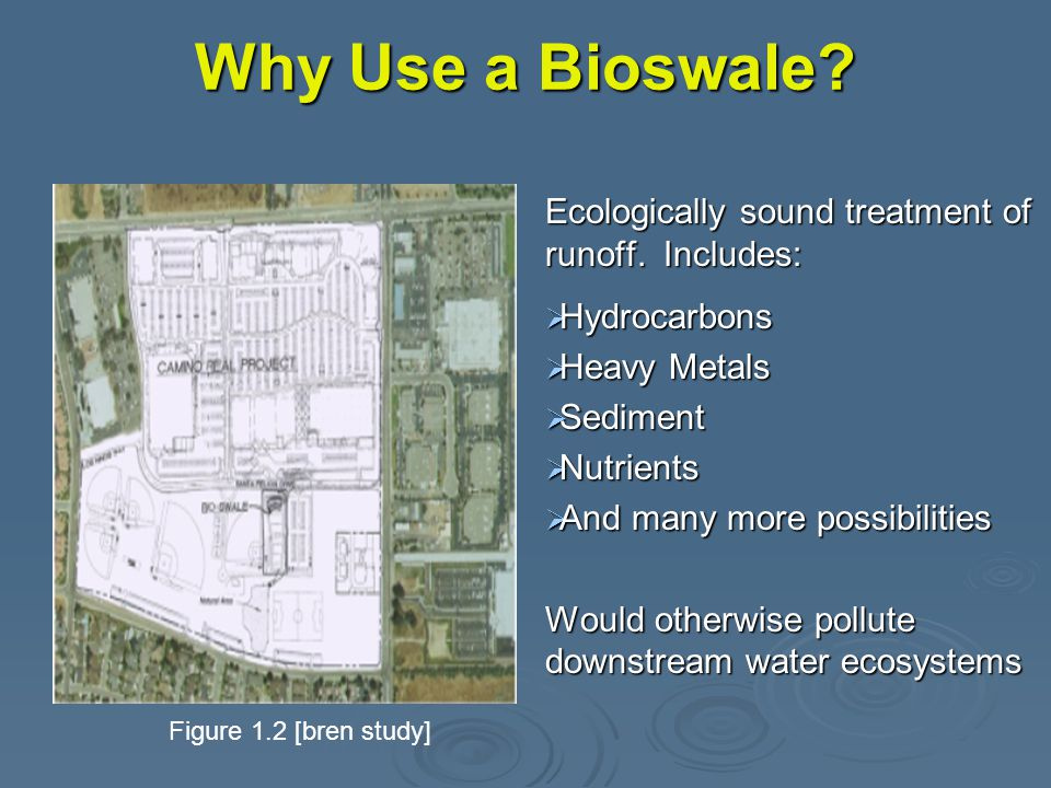 Why Use a Bioswale. Ecologically sound treatment of runoff.