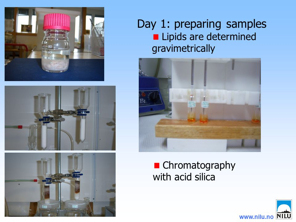 www.nilu.no Day 1: preparing samples Lipids are determined gravimetrically Chromatography with acid silica