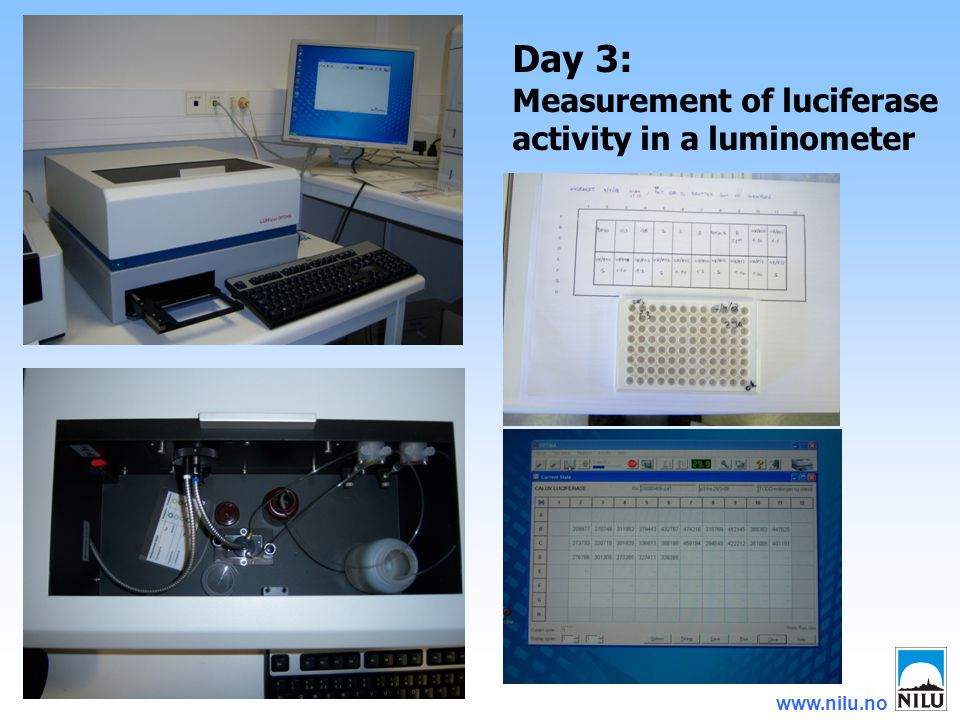 www.nilu.no Day 3: Measurement of luciferase activity in a luminometer