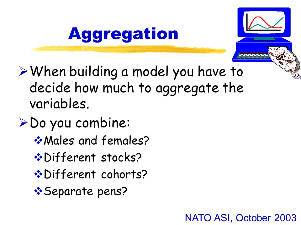 NATO ASI, October 2003 Aggregation  When building a model you have to decide how much to aggregate the variables.