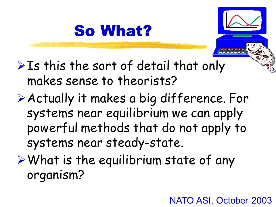 NATO ASI, October 2003 So What.  Is this the sort of detail that only makes sense to theorists.