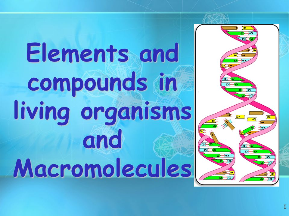 ELEMENTS IN LIVING ORGANISMS The commonest chemical elements of life are: –Carbon (C) –Hydrogen (H) –Oxygen (O) –Nitrogen (N) 2 CHON