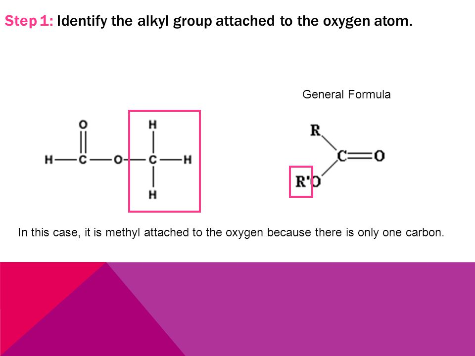 Step 1: Identify the alkyl group attached to the oxygen atom. In this case, it is methyl attached to the oxygen because there is only one carbon. Gene