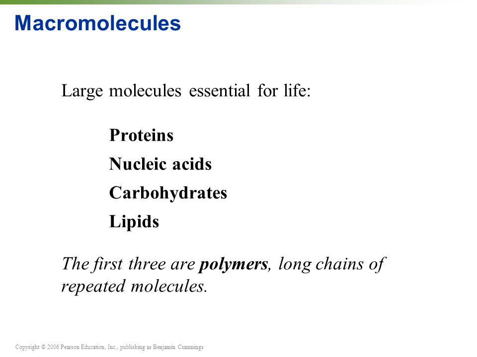 Copyright © 2006 Pearson Education, Inc., publishing as Benjamin Cummings Macromolecules Large molecules essential for life: Proteins Nucleic acids Carbohydrates Lipids The first three are polymers, long chains of repeated molecules.