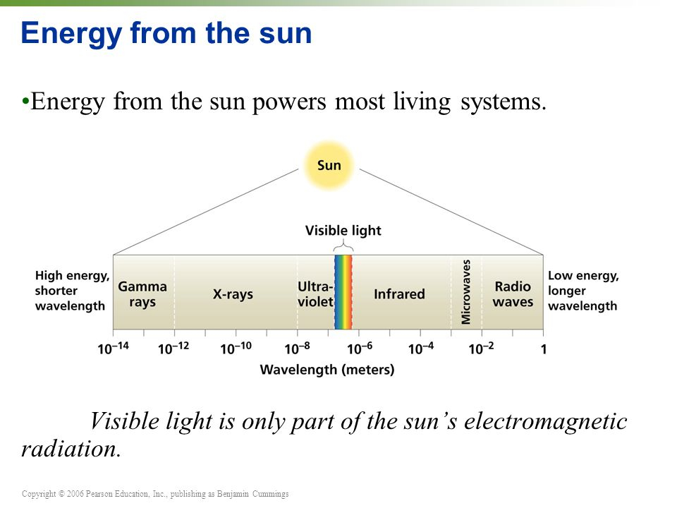 Copyright © 2006 Pearson Education, Inc., publishing as Benjamin Cummings Energy from the sun Energy from the sun powers most living systems.