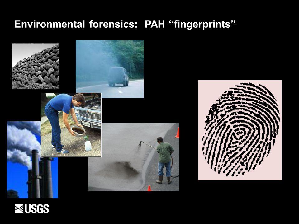 "Environmental forensics: PAH ""fingerprints"""