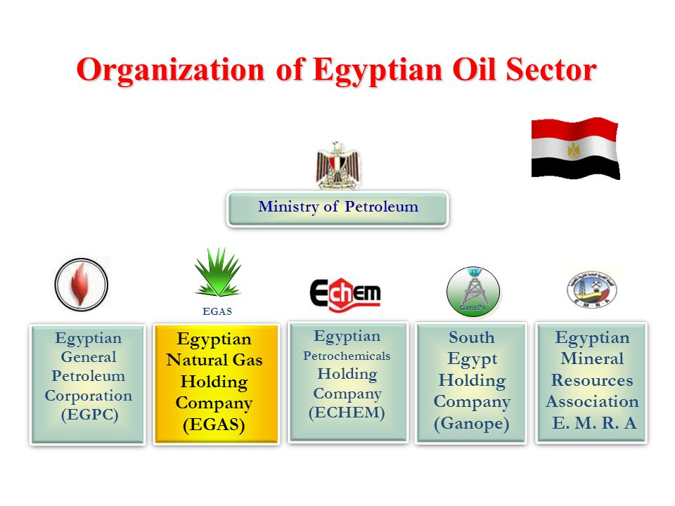 Ministry of Petroleum South Egypt Holding Company (Ganope) GanoPe Egyptian Petrochemicals Holding Company (ECHEM) Egyptian Mineral Resources Associati