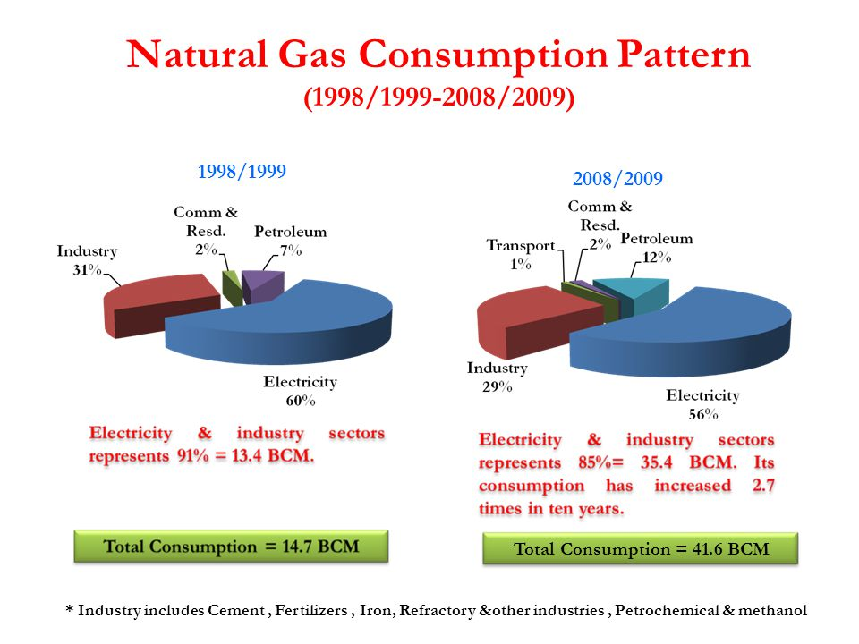 * Industry includes Cement, Fertilizers, Iron, Refractory &other industries, Petrochemical & methanol 2008/2009 Total Consumption = 41.6 BCM Natural G
