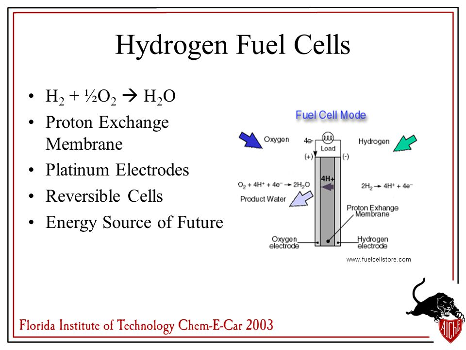 Hydrogen Fuel Cells H 2 + ½O 2  H 2 O Proton Exchange Membrane Platinum Electrodes Reversible Cells Energy Source of Future www.fuelcellstore.com