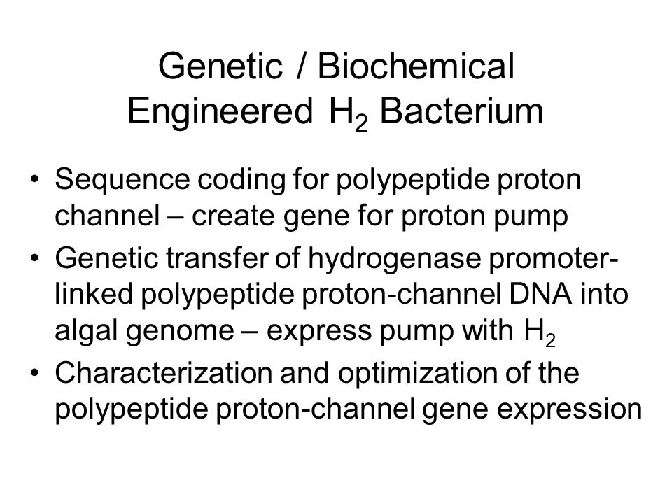 Genetic / Biochemical Engineered H 2 Bacterium Sequence coding for polypeptide proton channel – create gene for proton pump Genetic transfer of hydrogenase promoter- linked polypeptide proton-channel DNA into algal genome – express pump with H 2 Characterization and optimization of the polypeptide proton-channel gene expression