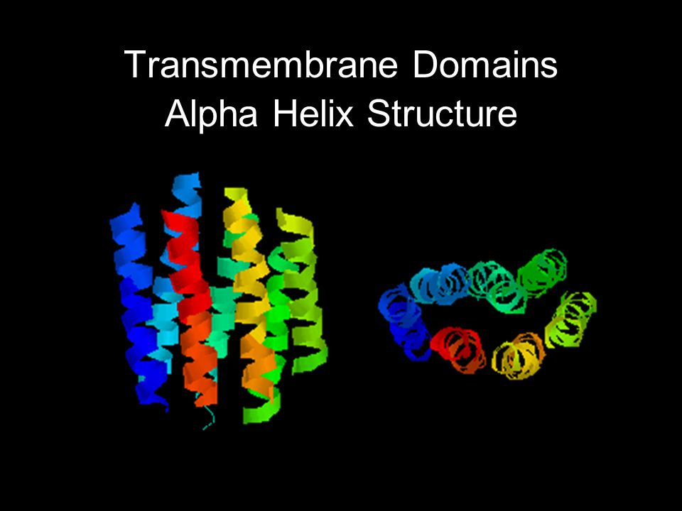 Transmembrane Domains Alpha Helix Structure