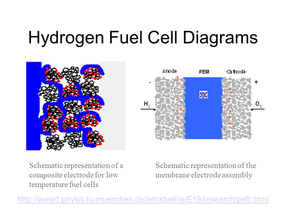 Hydrogen Fuel Cell Diagrams Schematic representation of a composite electrode for low temperature fuel cells Schematic representation of the membrane electrode assembly http://www1.physik.tu-muenchen.de/lehrstuehle/E19/research/pefc.html