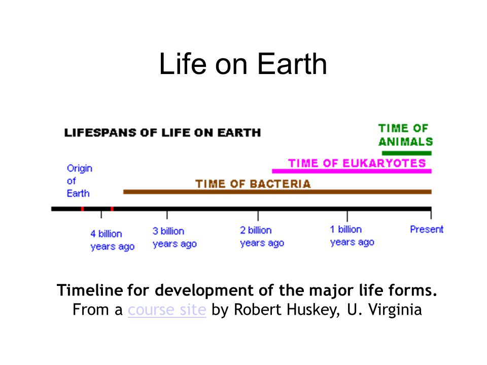 Life on Earth Timeline for development of the major life forms.