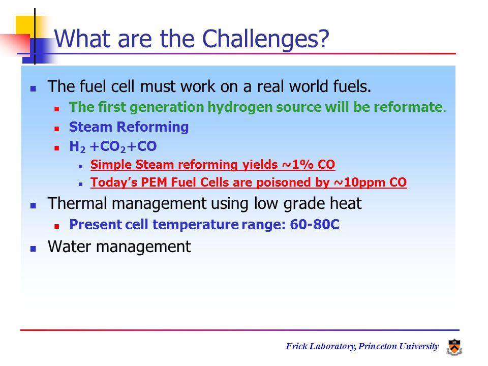 Frick Laboratory, Princeton University ----CF 2 -CF 2 --- OH Metal Oxide -----CF----- O=S=O OH Metal Oxide O Ti Metal Oxide HO -----CF----- SO 3 - Potential Chemical Interactions