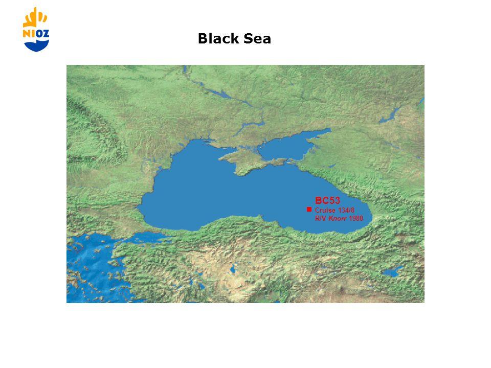 BC53 Cruise 134/8 R/V Knorr 1988 Black Sea