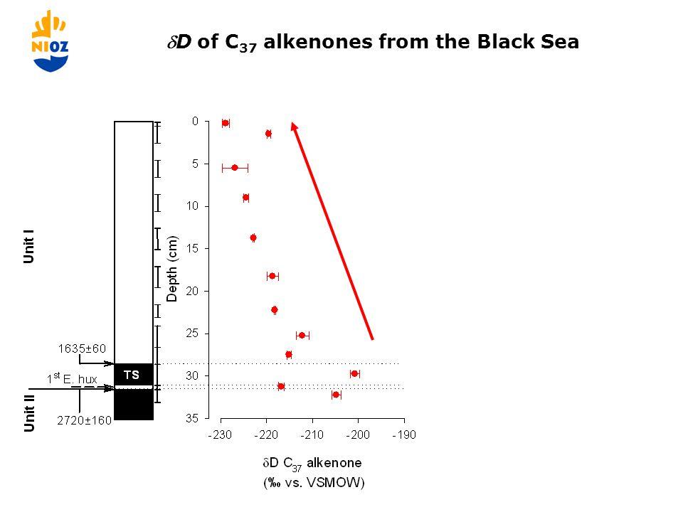 Paleo-salinity estimates