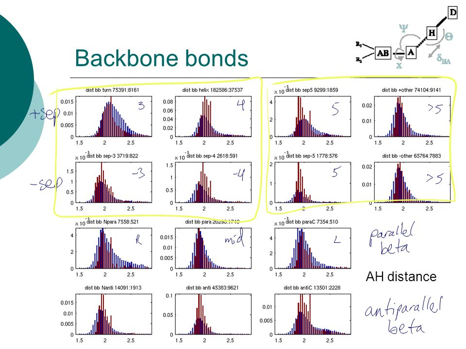 Backbone bonds AH distance