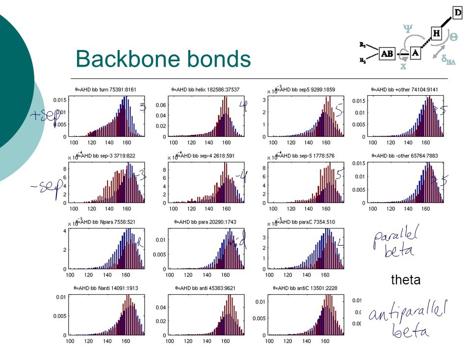 Backbone bonds theta
