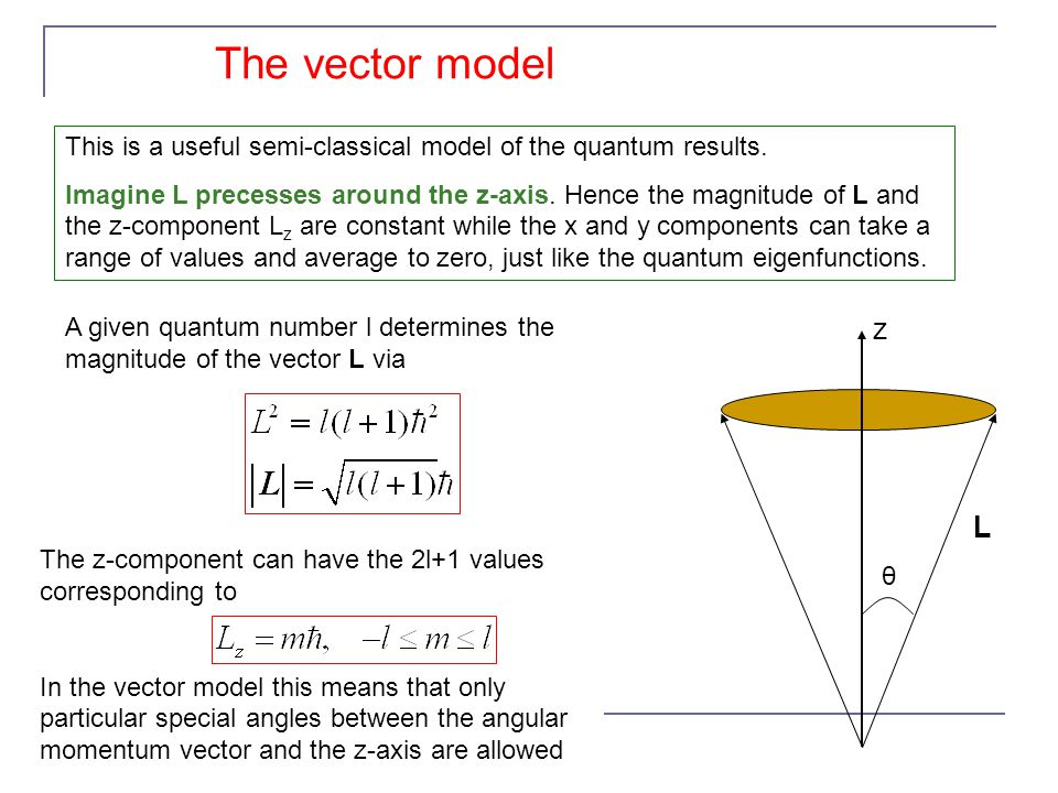 The vector model The z-component can have the 2l+1 values corresponding to In the vector model this means that only particular special angles between