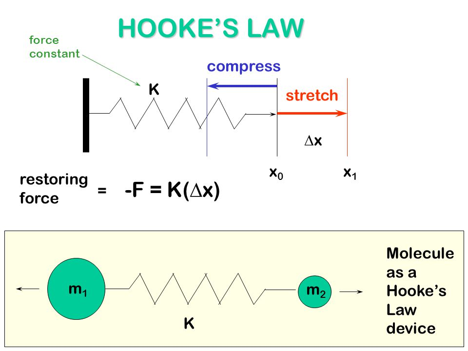 HOOKE'S LAW x0x0 x1x1 xx K -F = K(  x) m1m1 m2m2 K Molecule as a Hooke's Law device restoring force = stretch compress force constant