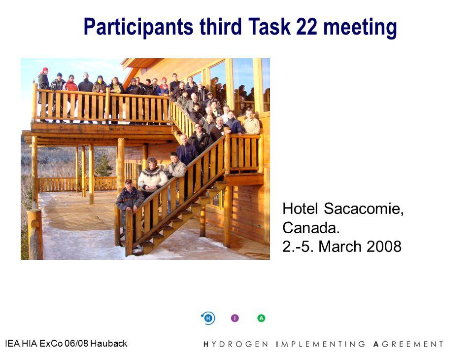IEA HIA ExCo 06/08 Hauback Participants third Task 22 meeting Hotel Sacacomie, Canada.