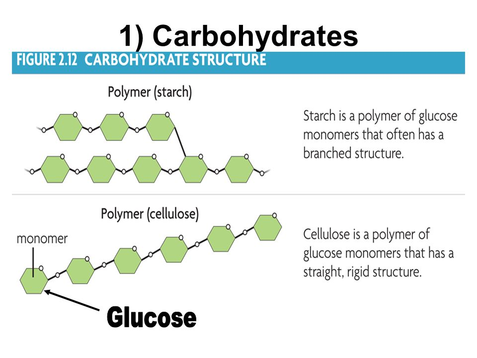 1) Carbohydrates