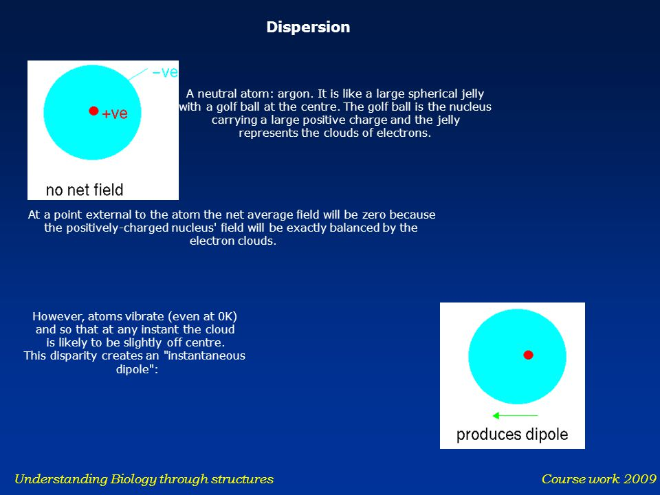 Understanding Biology through structures Course work 2009 Dispersion A neutral atom: argon. It is like a large spherical jelly with a golf ball at the
