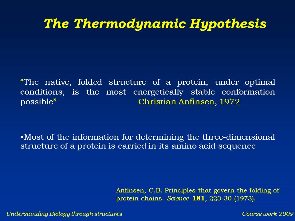 Understanding Biology through structures Course work 2009 The Thermodynamic Hypothesis The native, folded structure of a protein, under optimal conditions, is the most energetically stable conformation possible Christian Anfinsen, 1972 Most of the information for determining the three-dimensional structure of a protein is carried in its amino acid sequence Anfinsen, C.B.