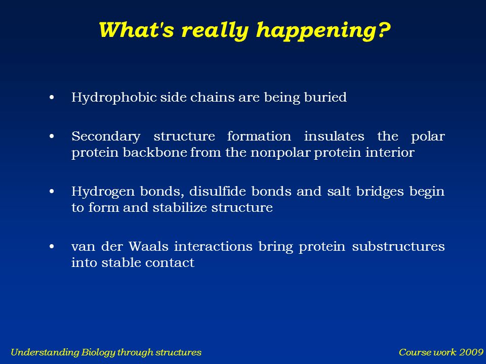 Understanding Biology through structures Course work 2009 What s really happening.