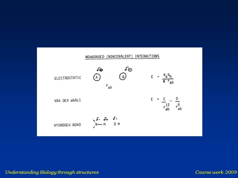 Understanding Biology through structures Course work 2009