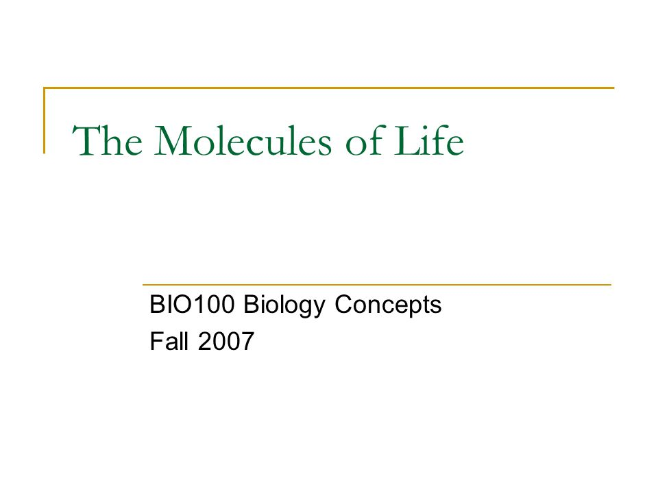 The Molecules of Life BIO100 Biology Concepts Fall 2007