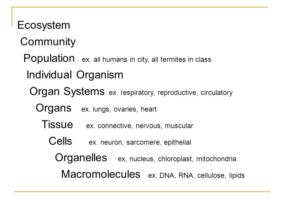 Ecosystem Community Population ex.