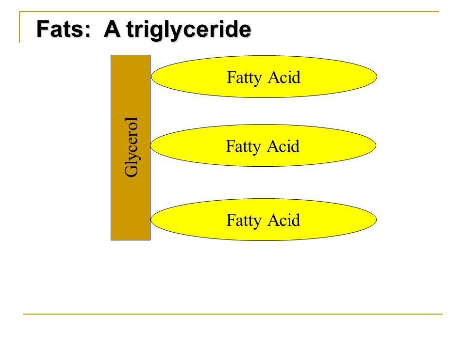 Fats: A triglyceride Glycerol Fatty Acid