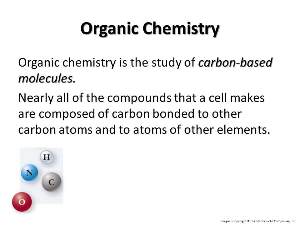 carbon-based molecules. Organic chemistry is the study of carbon-based molecules. Nearly all of the compounds that a cell makes are composed of carbon