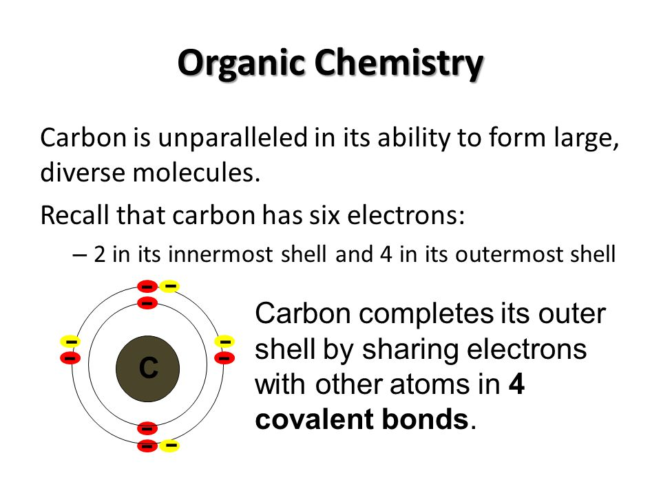 Organic Chemistry Carbon is unparalleled in its ability to form large, diverse molecules. Recall that carbon has six electrons: – 2 in its innermost s