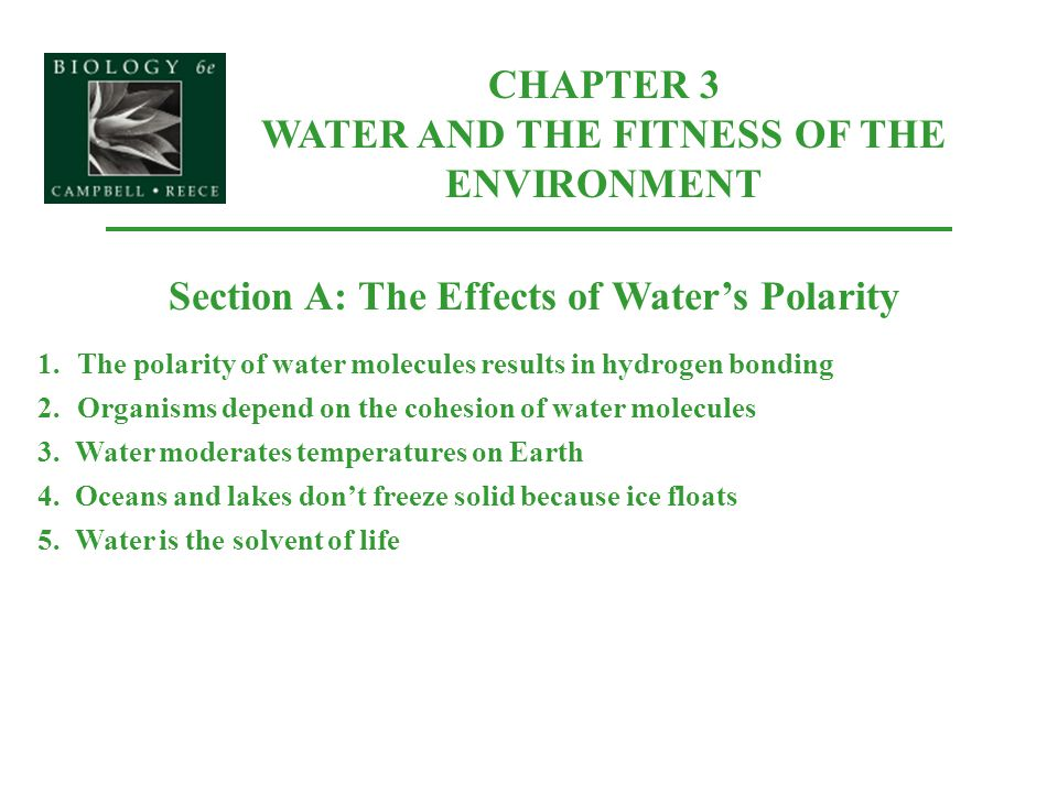 CHAPTER 3 WATER AND THE FITNESS OF THE ENVIRONMENT Section A: The Effects of Water's Polarity 1.The polarity of water molecules results in hydrogen bo