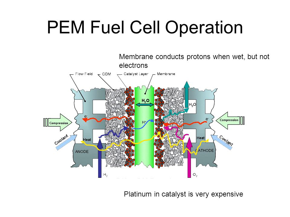 PEM Fuel Cell Operation Platinum in catalyst is very expensive Membrane conducts protons when wet, but not electrons