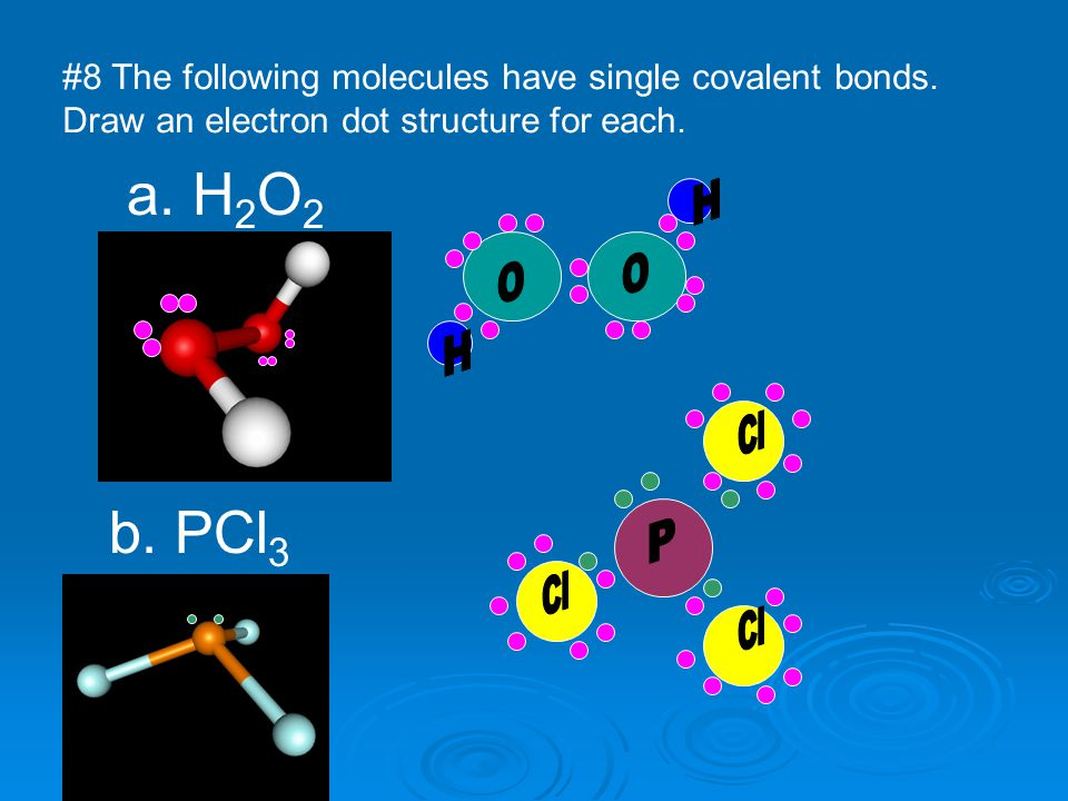 #8 The following molecules have single covalent bonds. Draw an electron dot structure for each. a. H 2 O 2 b. PCl 3