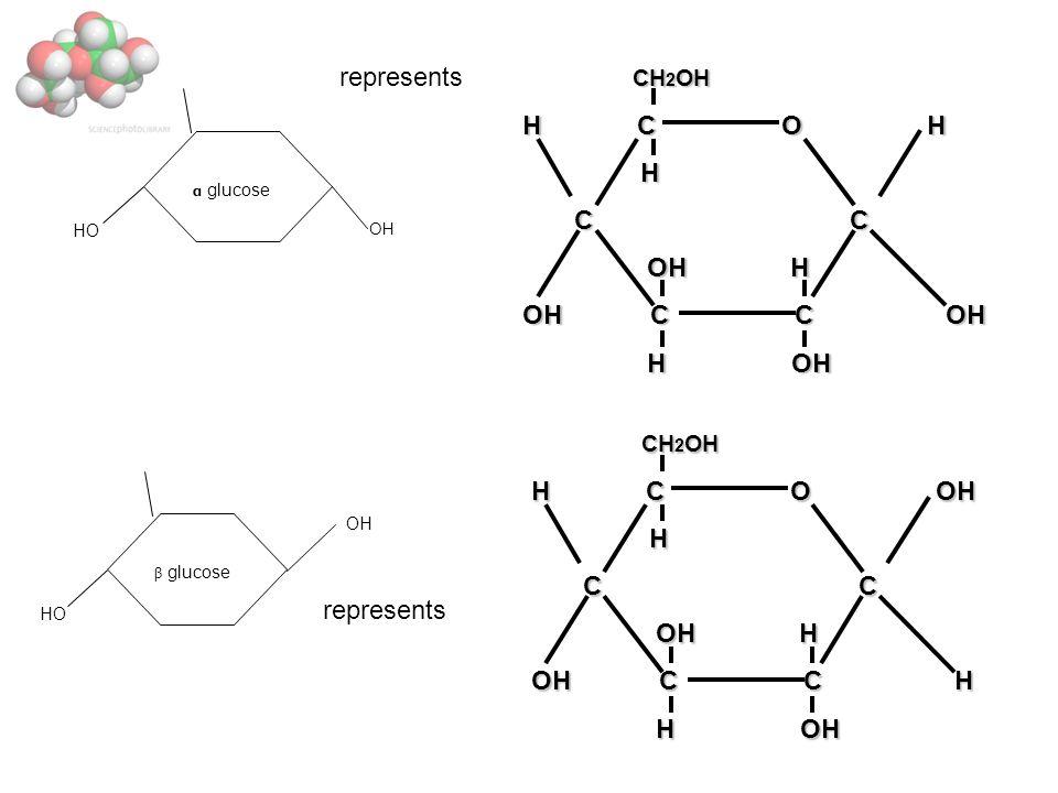 CH 2 OH CH 2 OH H C O OH H C C C C OH H OH H OH C C H H OH H OH CH 2 OH CH 2 OH H C O H H C C C C OH H OH H OH C C OH H OH H OH HO OH α glucose represents HO OH β glucose represents