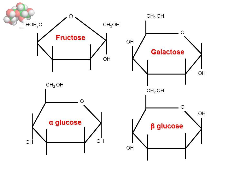 OH CH 2 OHHOH 2 C O O CH 2 OH OH O CH 2 OH O OH Fructose Galactose α glucose β glucose