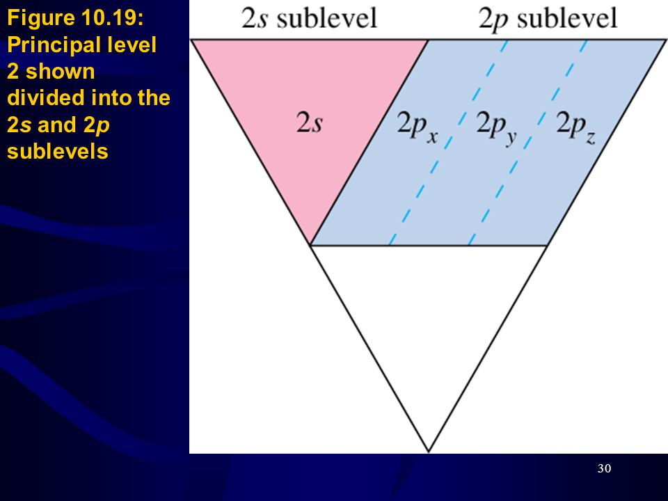 30 Figure 10.19: Principal level 2 shown divided into the 2s and 2p sublevels