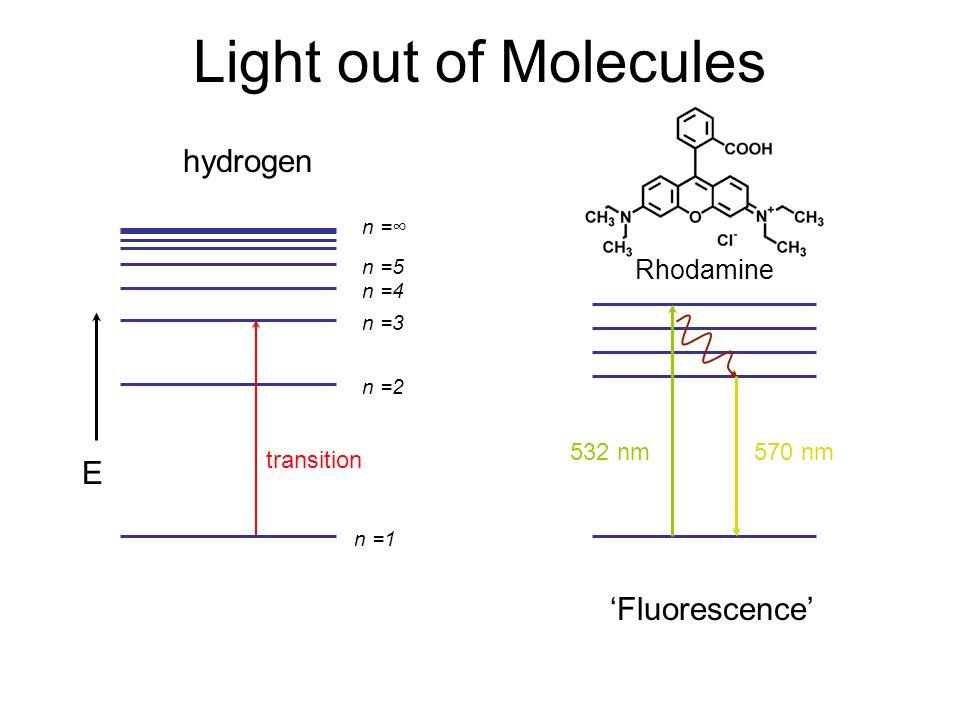Light out of Molecules n =1 n =2 n =3 n =4 n =5 n =∞ E transition hydrogen Rhodamine 532 nm 570 nm 'Fluorescence'