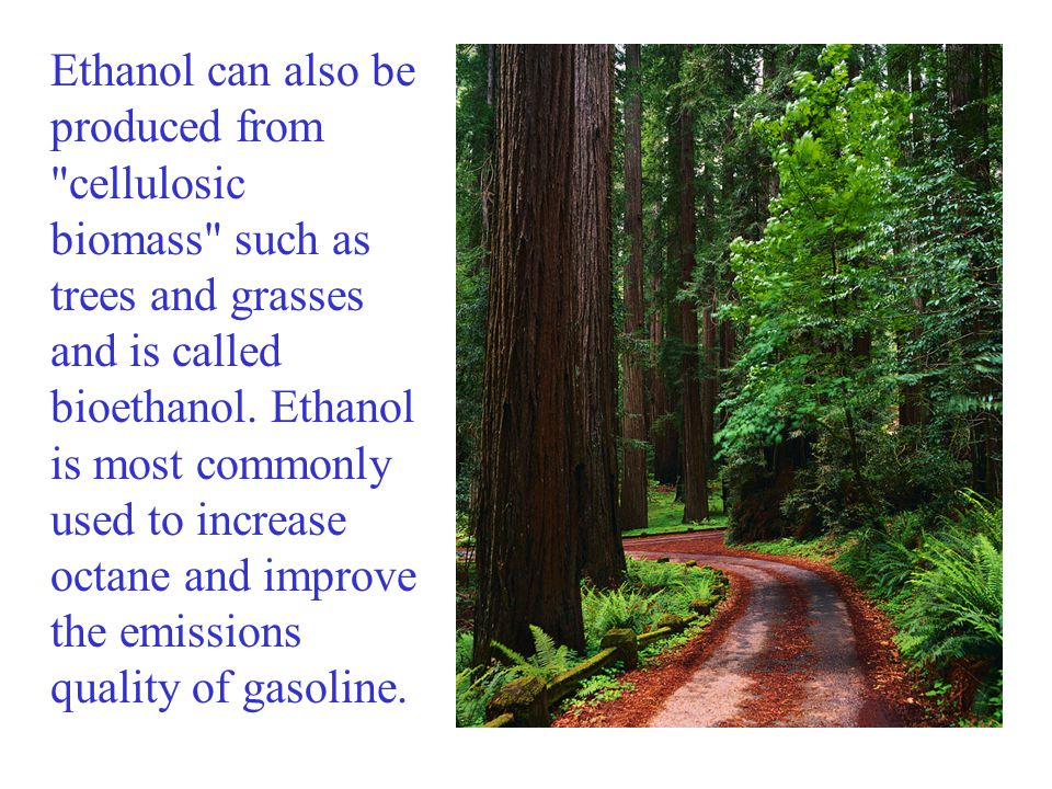 Ethanol can also be produced from