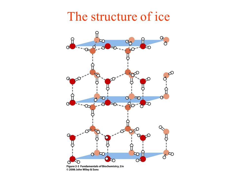 The structure of ice