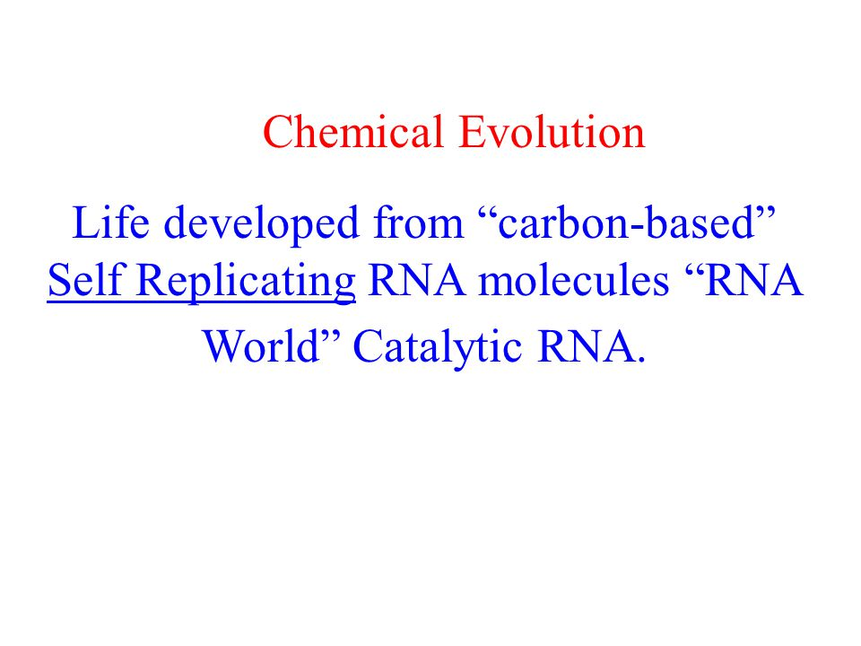 Life developed from carbon-based Self Replicating RNA molecules RNA World Catalytic RNA.